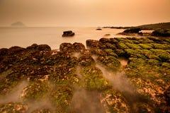 Ansicht des tropischen felsigen Strandes mit grüner Meerespflanze Stockbild