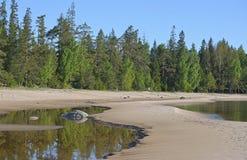 Ansicht des Ufers vom Ladogasee Stockfotografie