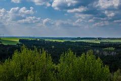 Ansicht des Waldes lizenzfreie stockfotos