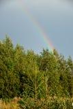 Ansicht des Waldes und des Regenbogens Lizenzfreie Stockfotografie