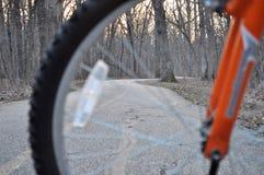 Ansicht des Waldweg-Abflussrinnenfahrradrades lizenzfreie stockfotos