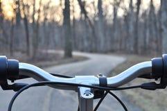 Ansicht des Waldweges von hinten Fahrradhandgriff lizenzfreies stockfoto