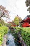 Ansicht des Wasserkanals mit Fischen Ansicht der Landschaft im Stadtpark, Tokyo, Japan Kopieren Sie Raum für Text vertikal stockfotografie