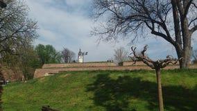 Ansicht in die Bäume des grünen Grases des Schlosses lizenzfreies stockbild