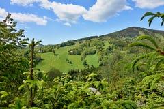Ansicht in die Berge Lizenzfreie Stockbilder