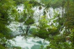 Ansicht in die Plitvice Seen Lizenzfreies Stockbild