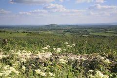 Ansicht, die in Richtung der Quantock-Hügel blickt Stockbilder