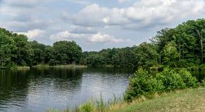 Ansicht durch den See lizenzfreie stockbilder