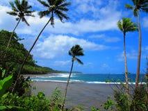 Ansicht durch die Palmen über einer tropischen Lagune Stockfotografie