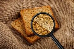 Ansicht durch eine Lupe zum Toasten von Brot Stockbilder