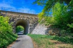 Ansicht durch einen alten Tunnel, über dem der Zug reist Lizenzfreie Stockfotografie