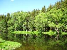 Ansicht durch einen See Stockfotografie