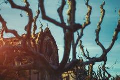 Ansicht durch grafisch gebogene blattlose Bäume auf Stein-buildi lizenzfreie stockbilder