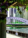 Ansicht einer Brücke über Sumida-Fluss vom Glyzinie-Gitter lizenzfreie stockbilder
