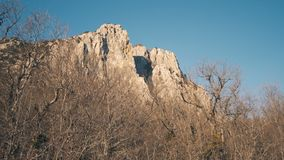 Ansicht einer schönen Felsengebirgsklippe durch einen Winterwald ohne Laub stock video footage