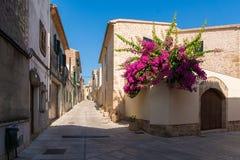 Ansicht einer schmalen Straße in der alten Stadt von Alcudia, Mallorca, Spanien Stockbilder