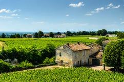 Ansicht eines Bauernhauses und der Reihen der Weinreben, die in einem vineyar wachsen Stockbild