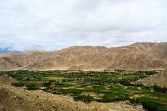 Ansicht eines Dorfs in Ladakh in Kaschmir Indien lizenzfreie stockbilder