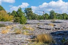 Ansicht eines geologischen Felsenparkpanoramas Stockbild