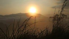 Ansicht eines nebeligen Sonnenaufgangs auf der kleinen des Adams Spitze in Ella Ella ist eine schöne kleine schläfrige Stadt auf  stock video