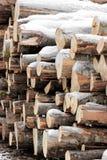 Ansicht eines Stapels Brennholzes Lizenzfreie Stockfotografie
