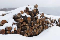 Ansicht eines Stapels Brennholzes bedeckt durch Schnee Stockfotos
