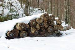 Ansicht eines Stapels Brennholzes bedeckt durch Schnee Lizenzfreie Stockfotografie