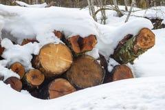 Ansicht eines Stapels Brennholzes bedeckt durch Schnee Lizenzfreies Stockbild