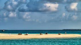 Ansicht eines Teils von einer Insel mit Tabellen und Stühlen Stockbilder