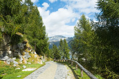 Ansicht für Berge und See Malga Bissina Stockfoto