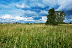 Ansicht in Haapsalu, Estland stockbilder