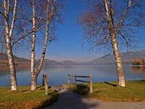 Ansicht hinunter den See Stockbilder