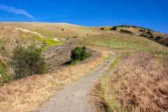 Ansicht innerhalb des Weißfisch-Ranch-Wildnis-Parks stockbild