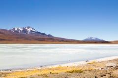 Ansicht Lagunas Hedionda, Bolivien lizenzfreies stockbild