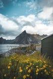 Ansicht Lofoten Norwegen in Richtung zum Berg mit atantic Ozean und zu den Felsen im Vordergrund Genommen an einem bewölkten Tag  stockbild