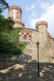 Ansicht Marianne Wilhelmine Oranska Palaces in Kamieniec Zabkowicki, Polen Stockfotografie