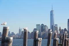 Ansicht mit einen World Trade Center- und New- York Cityskylinen Stockfotografie