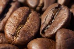 Ansicht mit zwei Kaffeebohnen Makro Lizenzfreie Stockfotos
