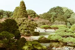 Ansicht nationalen Gartens Shinjuku während des Herbstes Lizenzfreies Stockbild