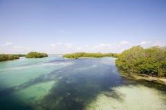Ansicht Nationalparks des Sian-Ka'an Lizenzfreie Stockfotos
