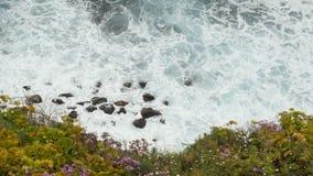 Ansicht oben an von den Meereswogen, die auf Steinen und Felsen zusammensto?en Sch?ne Blumen auf dem Vordergrund stock video