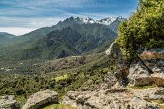 Ansicht in Richtung zu den Bergen von Asco in Korsika Stockfoto