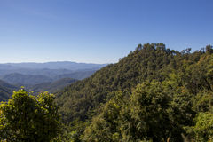 Ansicht in Samoeng-Wald Stockbild