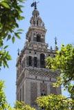 Ansicht Sevillas Giralda stockfoto