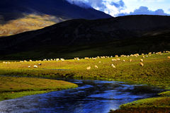 Ansicht in Tibet Stockfotografie
