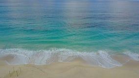 Ansicht vom Brummen auf einem exotischen Strand stock video