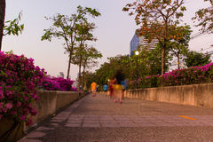Ansicht vom Chao Phraya Fluss Stockfotos