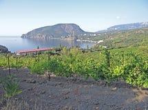 Ansicht vom Dorf auf der Klippe Ayu-Dag (Bear Mountain) stockbilder