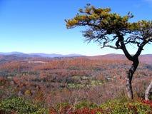 Ansicht vom flachen Felsen der blauen Ridge-Allee Stockbild