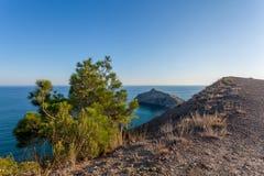 Ansicht vom Gebirgssteinigen Weg auf kleiner Südkiefer in der Front und in r Stockfotografie